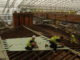 Rénovation de toiture : des conseils pour bien réussir son projet