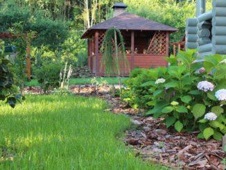 Astuces pour apporter la nature chez soi